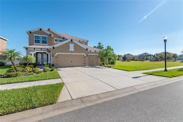 7374 Sugar Brook Place, Wesley Chapel, FL 33545 (MLS #T3150637) :: Team Bohannon Keller Williams, Tampa Properties