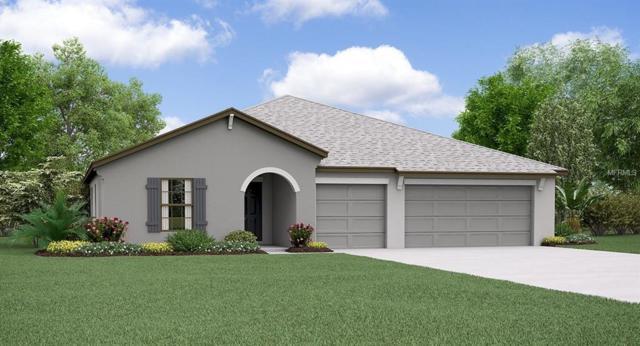 11118 Carlton Fields Drive, Riverview, FL 33579 (MLS #T3150645) :: The Duncan Duo Team