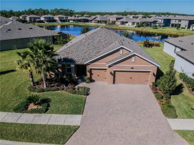 1871 Fox Grape Loop, Lutz, FL 33558 (MLS #T3150690) :: The Duncan Duo Team