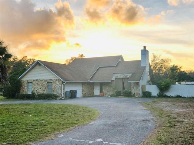19630 Hiawatha Road, Odessa, FL 33556 (MLS #T3150703) :: Homepride Realty Services