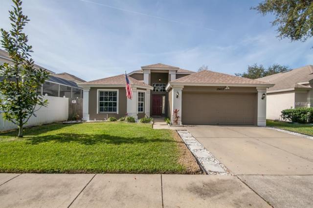 13433 White Elk Loop, Tampa, FL 33626 (MLS #T3150735) :: Griffin Group
