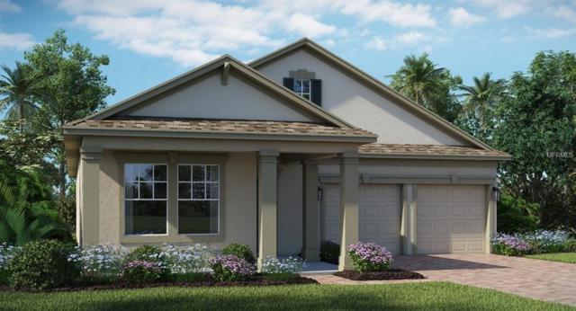 443 Brunswick Drive, Davenport, FL 33837 (MLS #T3150754) :: The Light Team