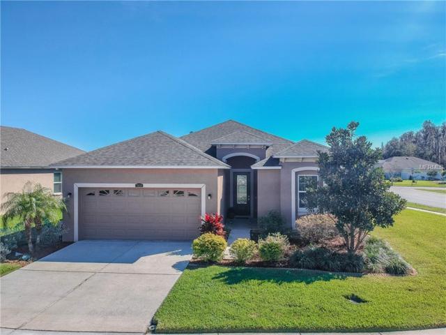 3854 Tillman Drive, Wesley Chapel, FL 33543 (MLS #T3150780) :: Team Bohannon Keller Williams, Tampa Properties