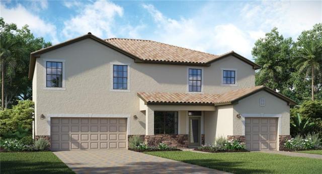 14111 Flat Woods Terrace, Bradenton, FL 34211 (MLS #T3150806) :: Medway Realty