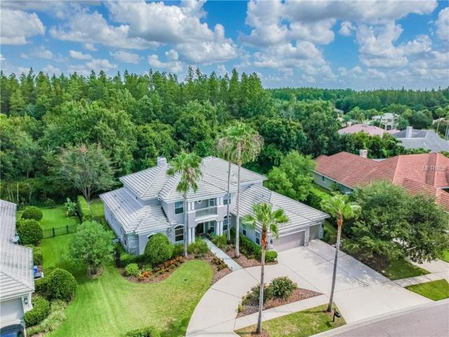 9822 Emerald Links Drive, Tampa, FL 33626 (MLS #T3150823) :: Griffin Group