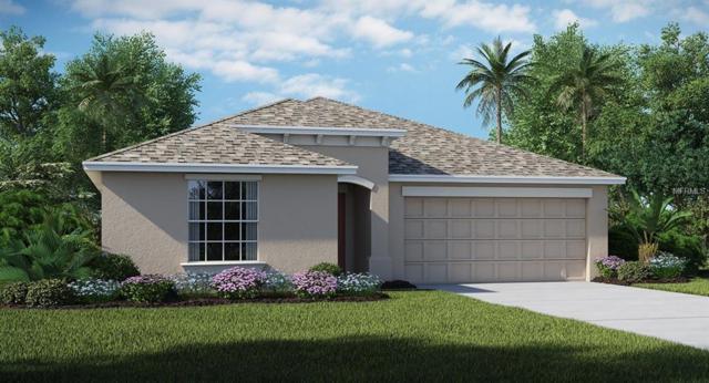 7001 Trent Creek Drive, Ruskin, FL 33573 (MLS #T3150825) :: The Duncan Duo Team