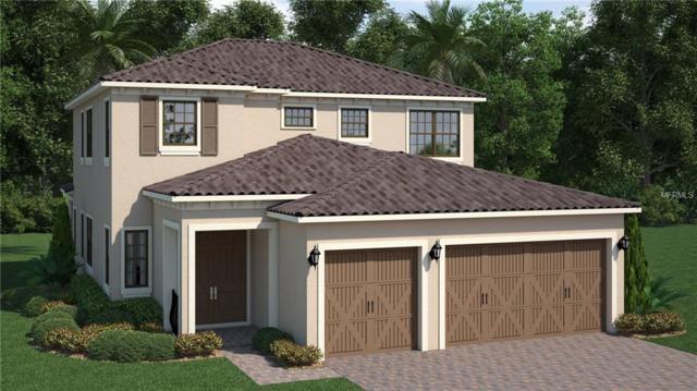 13147 Woodford Street, Orlando, FL 32832 (MLS #T3150845) :: The Light Team