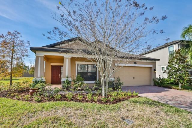 1732 Fox Grape Loop, Lutz, FL 33558 (MLS #T3150870) :: The Duncan Duo Team