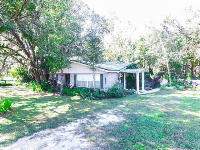 6705 Hatcher Road, Lakeland, FL 33811 (MLS #T3150874) :: Florida Real Estate Sellers at Keller Williams Realty