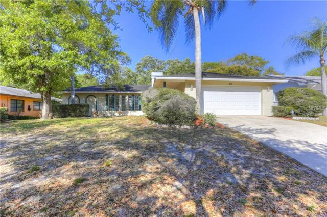 805 Highview Drive, Palm Harbor, FL 34683 (MLS #T3150904) :: Paolini Properties Group