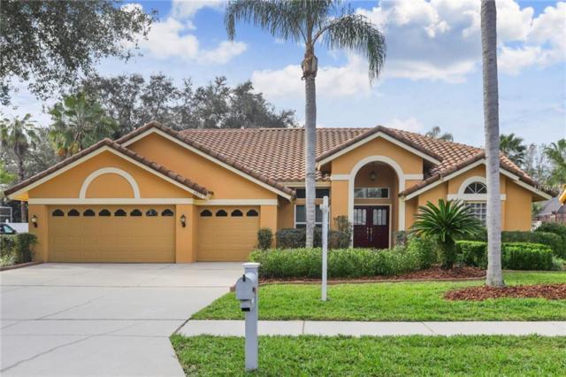 4813 Londonderry Drive, Tampa, FL 33647 (MLS #T3150905) :: Delgado Home Team at Keller Williams