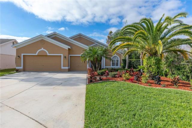 1531 Broken Branch Drive, Wesley Chapel, FL 33543 (MLS #T3150981) :: Arruda Family Real Estate Team