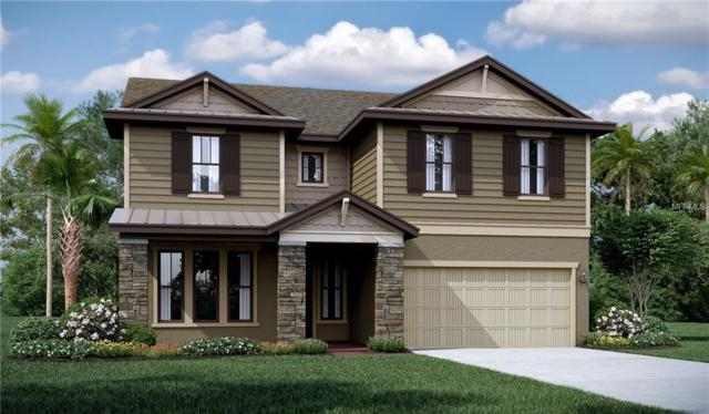 9711 Lakeside Oaks Reserve Place, Tampa, FL 33618 (MLS #T3150989) :: Delgado Home Team at Keller Williams