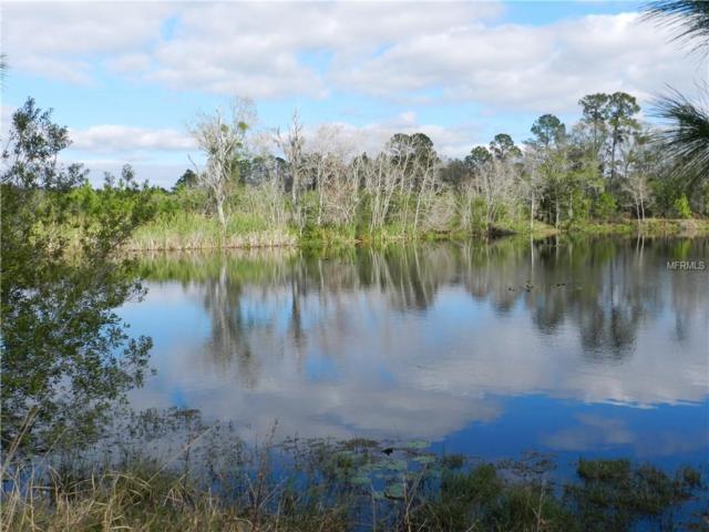 4730 Cobb Road, Land O Lakes, FL 34638 (MLS #T3151026) :: Burwell Real Estate