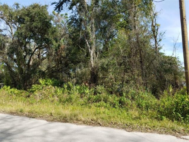 13021 Monica Avenue, New Port Richey, FL 34654 (MLS #T3151108) :: The Duncan Duo Team
