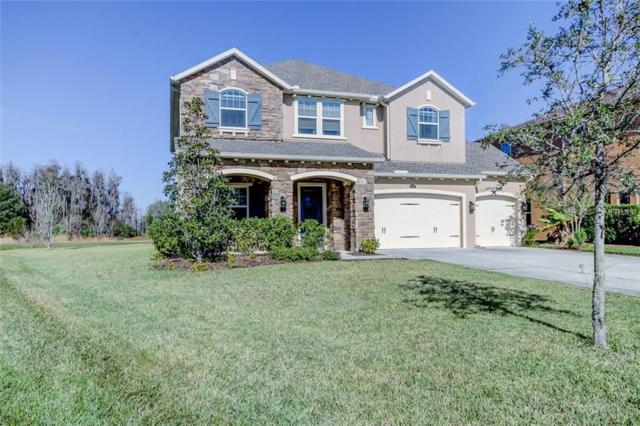 4193 Canino Court, Wesley Chapel, FL 33543 (MLS #T3151122) :: The Duncan Duo Team