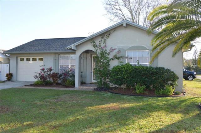 3110 Loomis Drive, New Port Richey, FL 34655 (MLS #T3151125) :: Griffin Group