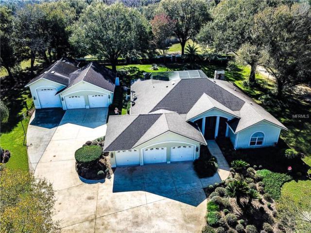 6728 Varn Road, Plant City, FL 33565 (MLS #T3151163) :: Jeff Borham & Associates at Keller Williams Realty