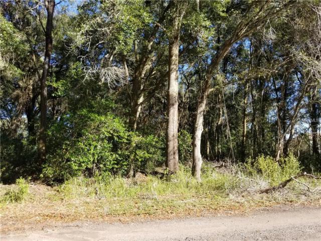 11648 Bessie Dix Road, Seffner, FL 33584 (MLS #T3151198) :: The Duncan Duo Team