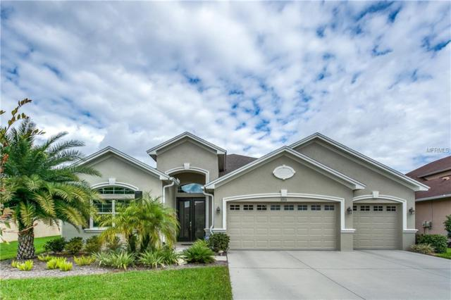 3355 Diamond Falls Circle, Land O Lakes, FL 34638 (MLS #T3151207) :: Arruda Family Real Estate Team