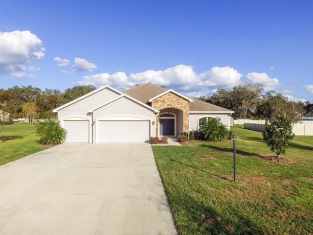 3324 Ranchdale Drive, Plant City, FL 33566 (MLS #T3151211) :: Jeff Borham & Associates at Keller Williams Realty