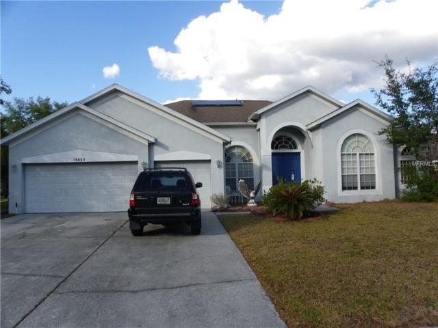 15853 Berea Drive, Odessa, FL 33556 (MLS #T3151221) :: Griffin Group