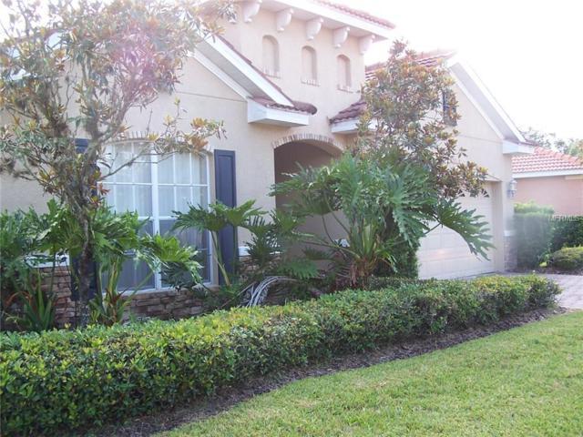 18005 Java Isle Drive, Tampa, FL 33647 (MLS #T3151224) :: Team Bohannon Keller Williams, Tampa Properties