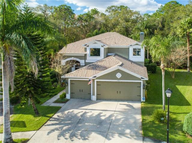 12817 Killarney Court, Odessa, FL 33556 (MLS #T3151297) :: Griffin Group
