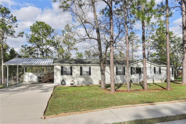 36029 Elli Way, Dade City, FL 33525 (MLS #T3151298) :: Jeff Borham & Associates at Keller Williams Realty