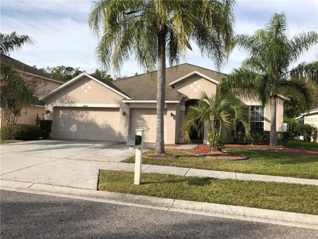 Address Not Published, Odessa, FL 33556 (MLS #T3151334) :: Griffin Group