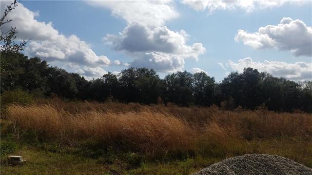 5416 Horton Road, Plant City, FL 33567 (MLS #T3151341) :: Jeff Borham & Associates at Keller Williams Realty