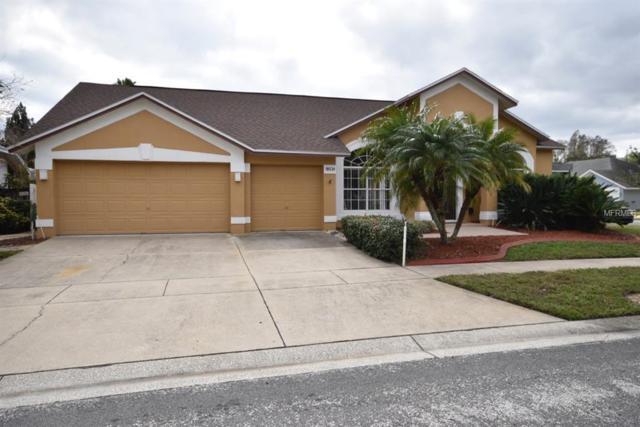 18534 Avocet Drive, Lutz, FL 33558 (MLS #T3151412) :: Griffin Group