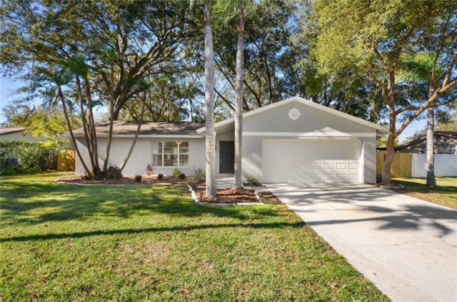 3915 King Drive, Brandon, FL 33511 (MLS #T3151447) :: Team Bohannon Keller Williams, Tampa Properties