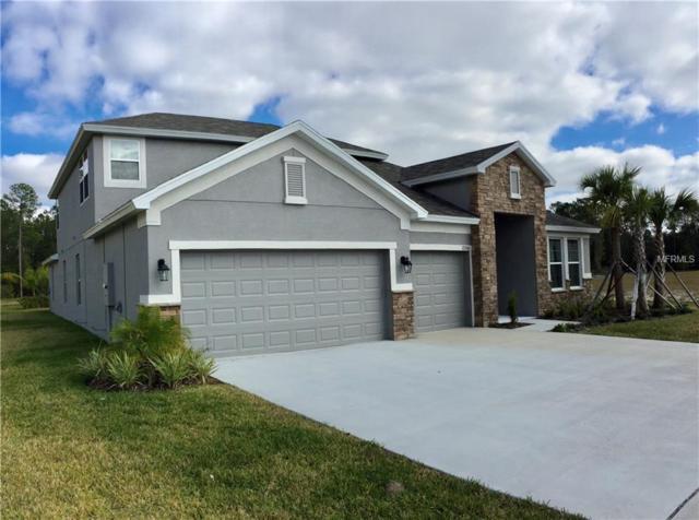 27266 Hawks Nest Circle, Wesley Chapel, FL 33544 (MLS #T3151466) :: Jeff Borham & Associates at Keller Williams Realty