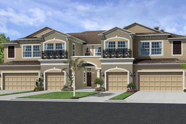 30021 Southwell Lane, Wesley Chapel, FL 33543 (MLS #T3151504) :: Baird Realty Group