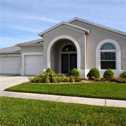 5328 Spectacular Bid Drive, Wesley Chapel, FL 33544 (MLS #T3151545) :: Jeff Borham & Associates at Keller Williams Realty