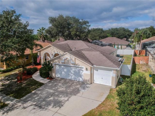 2406 Groveway Drive, Valrico, FL 33596 (MLS #T3151549) :: Arruda Family Real Estate Team