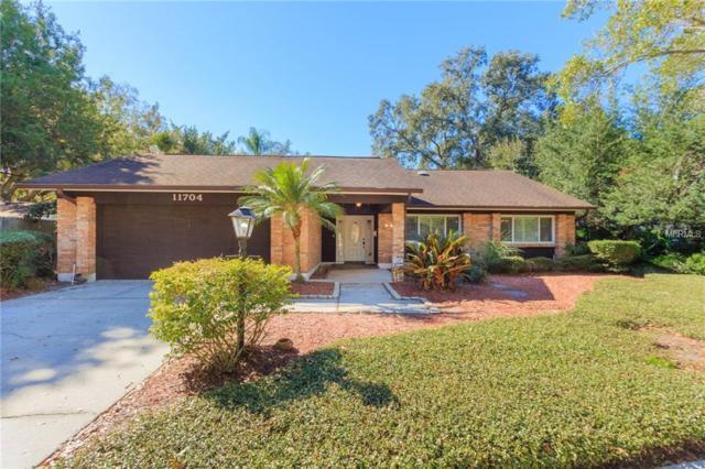 11704 Plumosa Road, Tampa, FL 33618 (MLS #T3151564) :: Delgado Home Team at Keller Williams