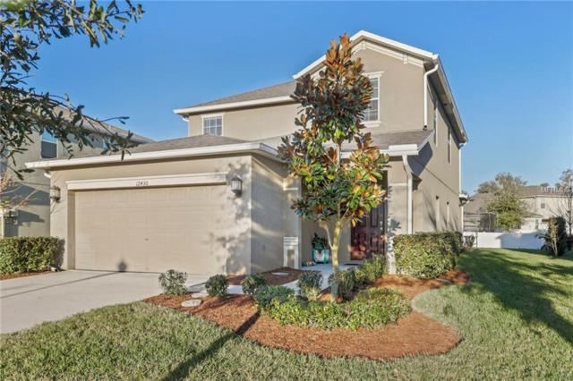 12430 Field Point Way, Spring Hill, FL 34610 (MLS #T3151566) :: Jeff Borham & Associates at Keller Williams Realty