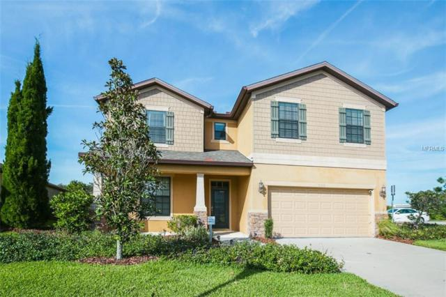 9306 Blueberry Ash Circle, Riverview, FL 33578 (MLS #T3151595) :: Arruda Family Real Estate Team