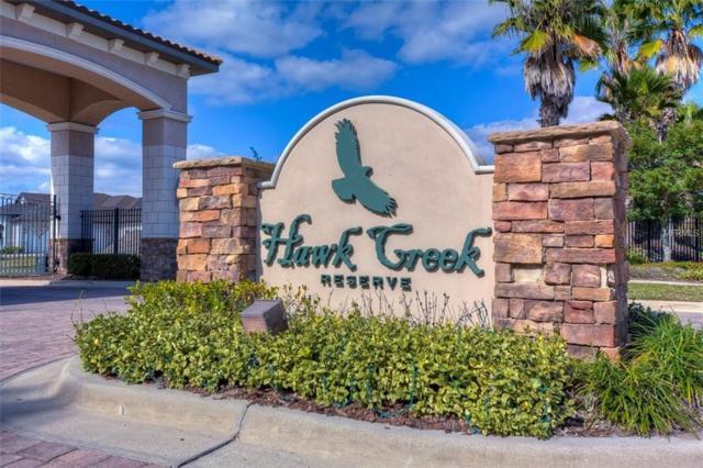 10916 Brooksnest Court, Lithia, FL 33547 (MLS #T3151637) :: Dalton Wade Real Estate Group