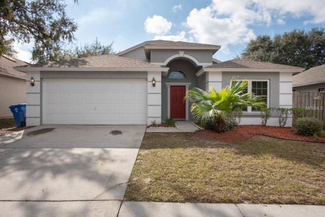 11303 Maybrook Avenue, Riverview, FL 33569 (MLS #T3151679) :: Dalton Wade Real Estate Group
