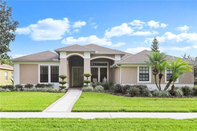 4334 Anaconda Drive, New Port Richey, FL 34655 (MLS #T3151769) :: Jeff Borham & Associates at Keller Williams Realty