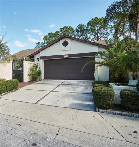 13524 Avista Drive, Tampa, FL 33624 (MLS #T3151771) :: The Duncan Duo Team