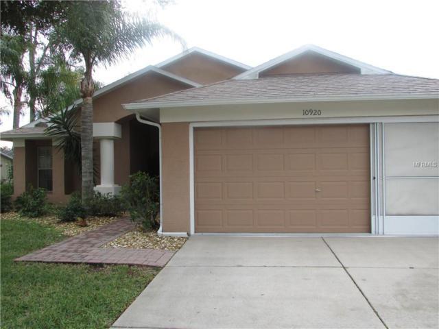 10920 Trelain Way, Hudson, FL 34667 (MLS #T3151775) :: Jeff Borham & Associates at Keller Williams Realty