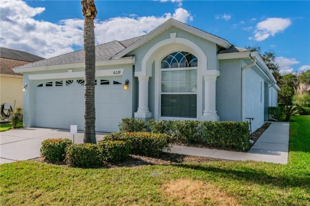 6239 Gentle Ben Circle, Wesley Chapel, FL 33544 (MLS #T3151784) :: Cartwright Realty