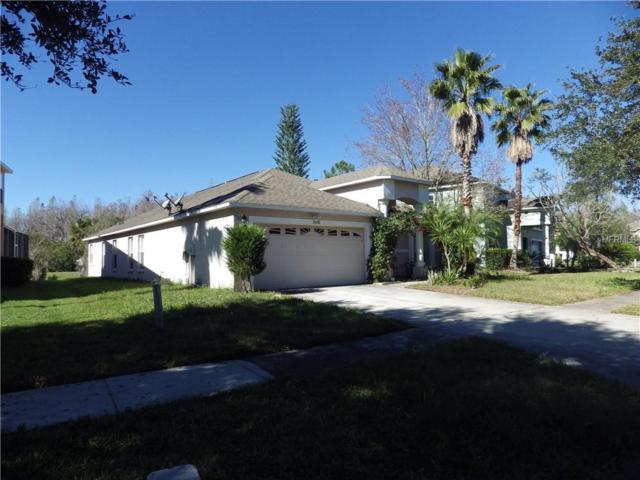 19258 Fishermans Bend Drive, Lutz, FL 33558 (MLS #T3151789) :: Florida Real Estate Sellers at Keller Williams Realty