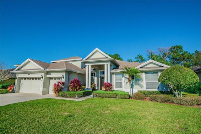 16808 Ivy Lake Drive, Odessa, FL 33556 (MLS #T3151795) :: Griffin Group