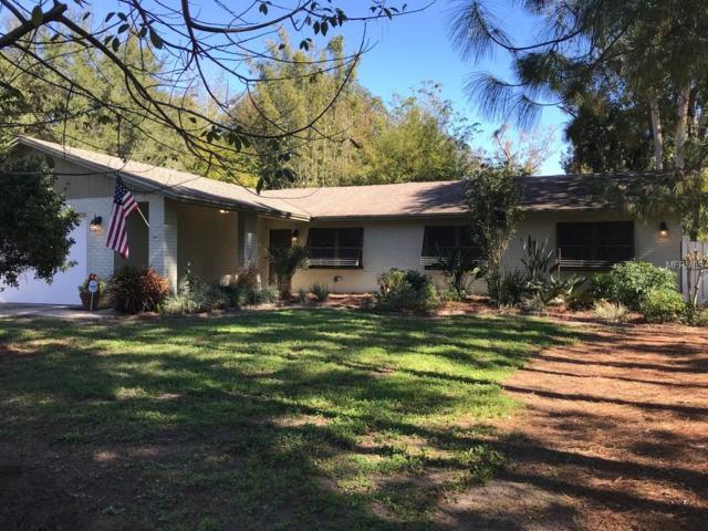 811 Old Darby Street, Seffner, FL 33584 (MLS #T3151801) :: Arruda Family Real Estate Team