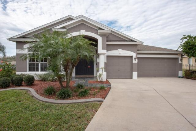 2007 Heartland Circle, Valrico, FL 33594 (MLS #T3151803) :: Griffin Group